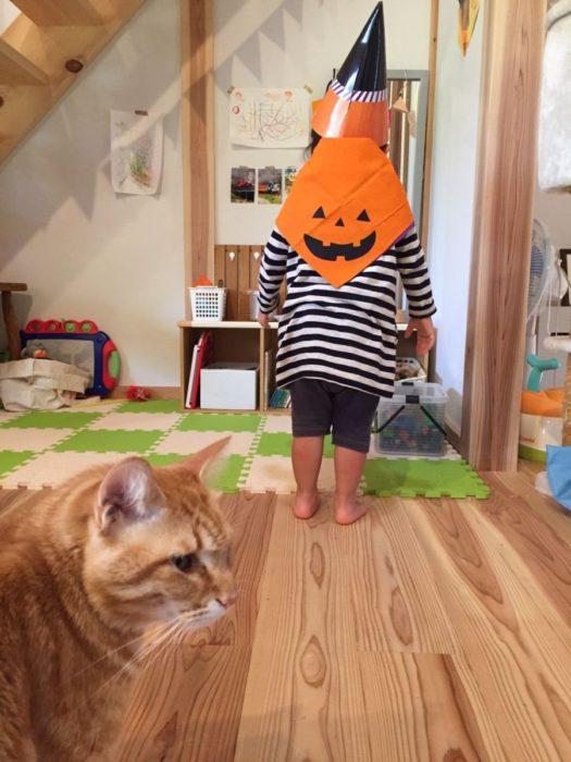 がぼちゃ大好き