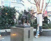 20060101_hachi