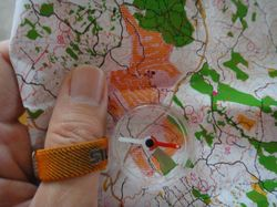 マイクロレーサーと今回の地図