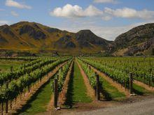 20101130_wine01
