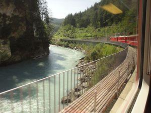 Sago_train