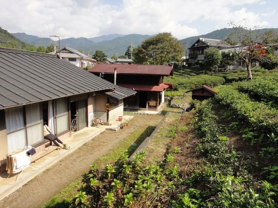 20121029house