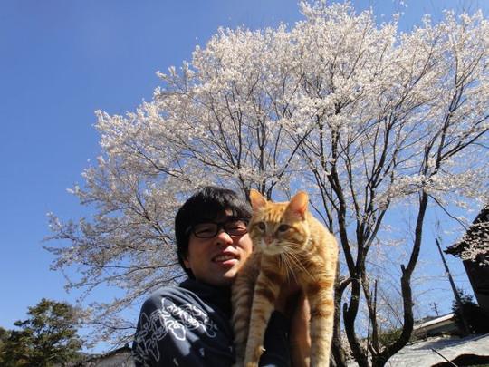 20140331sakura