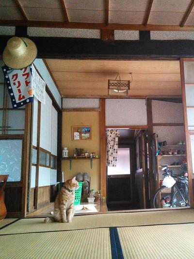 20140628_tami1_2